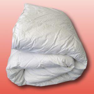 Cloud Soft Down Alternative Quilt